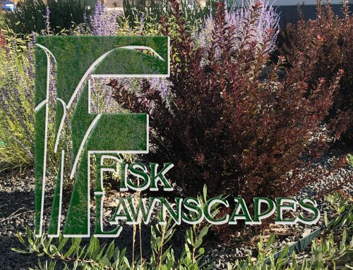 Using Landscape as Defensible Space